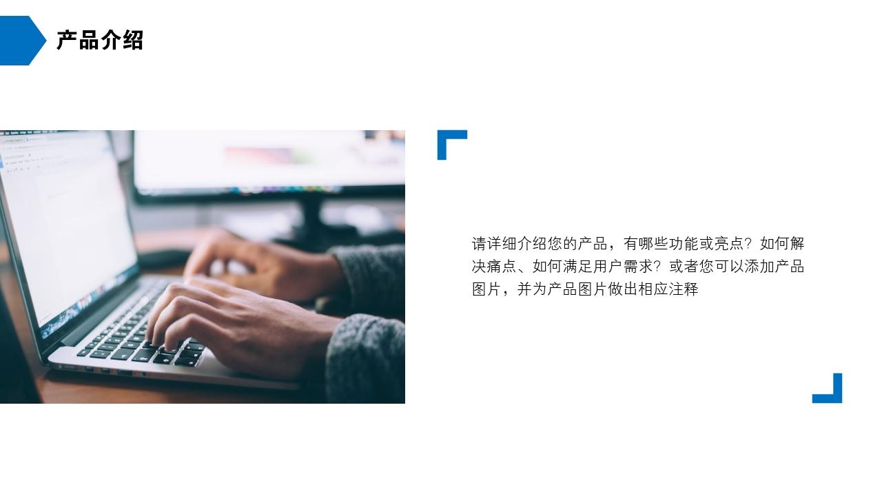 保險公司理財咨詢房地產公司完整商業計劃書PPT模版-產品介紹